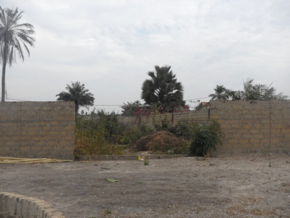 Buy Land in Gambia with The Property Shop