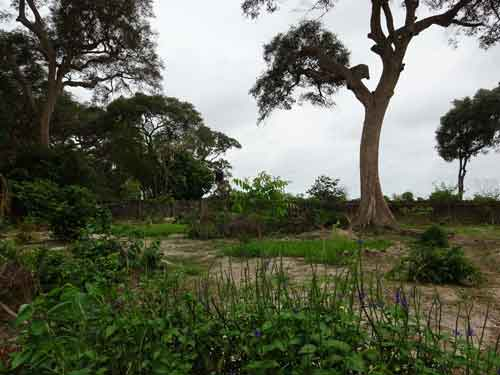 Land for Sale in Gambia by Property-Shop