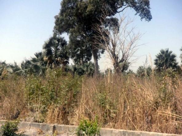Land For Sale Sanyang UV09 9