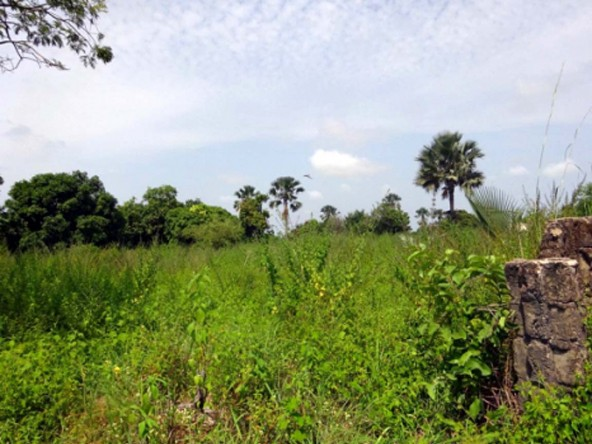 plot of land for sale in gunjur gambia